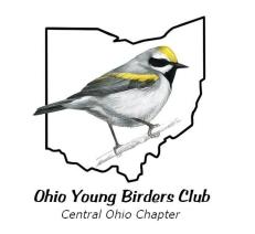 oybc_logo_large